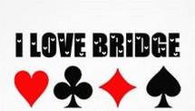 Bridge is leuk